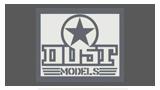 Dust Models