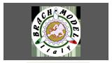 Brach Model