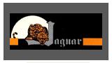 Jaguar Models